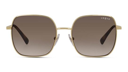VO 4175SB (280/13) Sunglasses Brown / Gold