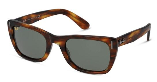 Caribbean Legend RB 2248 (954/31) Sunglasses Green / Tortoise Shell