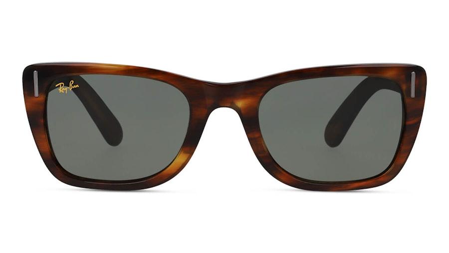 Ray-Ban Caribbean Legend RB 2248 (954/31) Sunglasses Green / Tortoise Shell