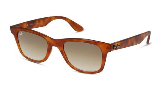 RB 4640 Unisex Sunglasses Brown / Havana