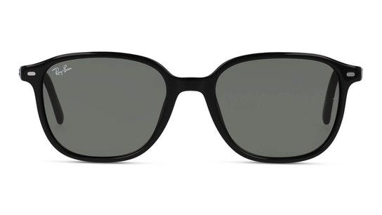 Leonard RB 2193 (901/31) Sunglasses Green / Black
