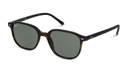 Leonard RB 2193 (902/32) Sunglasses Green / Havana