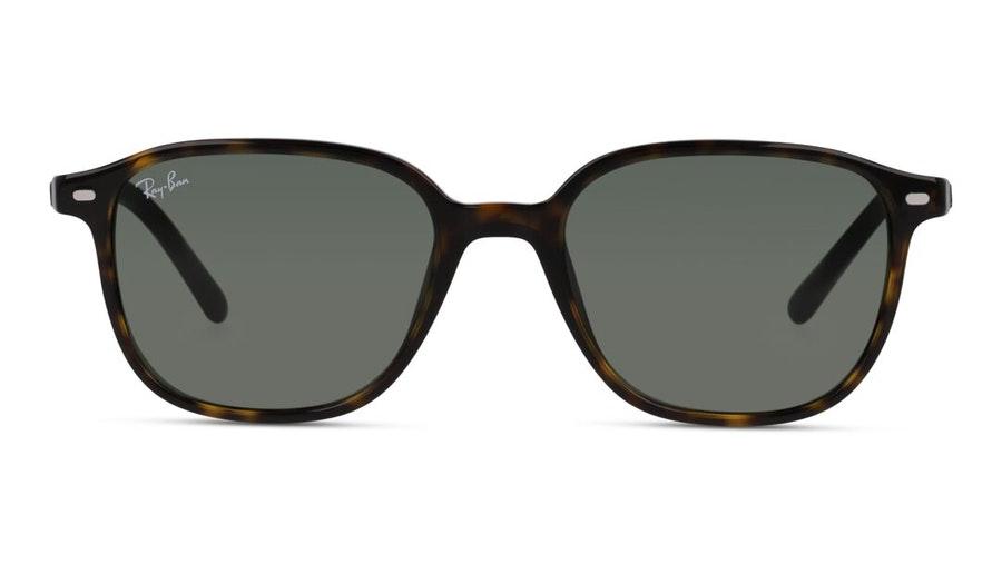 Ray-Ban Leonard RB 2193 Women's Sunglasses Green / Havana