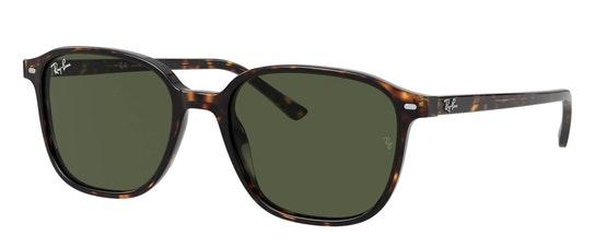 Leonard RB 2193 Men's Sunglasses Green / Tortoise Shell
