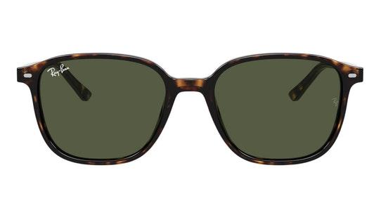 Leonard RB 2193 (902/31) Sunglasses Green / Tortoise Shell