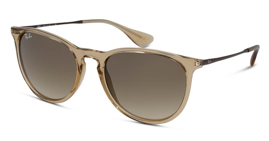 Erika Color Mix RB 4171 (651413) Sunglasses Brown / Brown