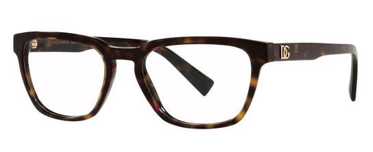 DG 3333 (502) Glasses Transparent / Tortoise Shell