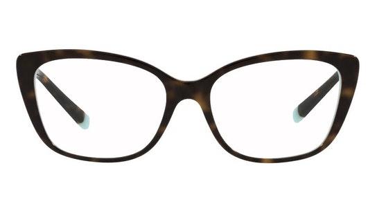 TF 2208B Women's Glasses Transparent / Tortoise Shell