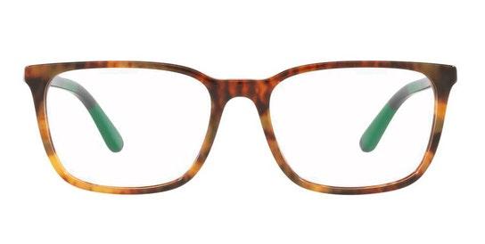 PH 2234 (5017) Glasses Transparent / Tortoise Shell