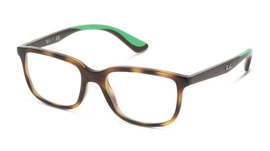 RY 1605 Children's Glasses Transparent / Havana