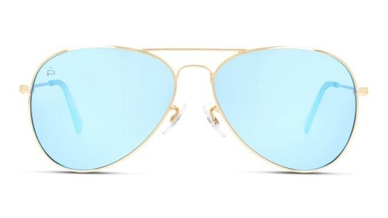 Commando Unisex Sunglasses Brown / Gold