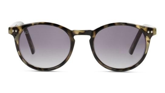 The Maestro (C12) Sunglasses Grey / Brown