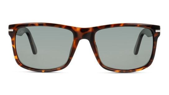 Speculator Unisex Sunglasses Blue / Tortoise Shell