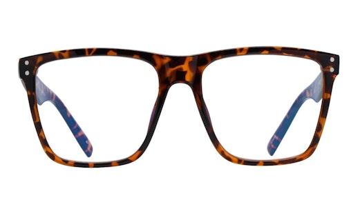 Visionary MLK (C10) Glasses Transparent / Havana