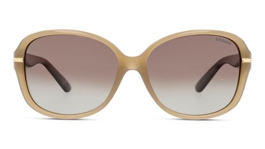 PLD 8419/B (10A) Sunglasses Brown / Brown