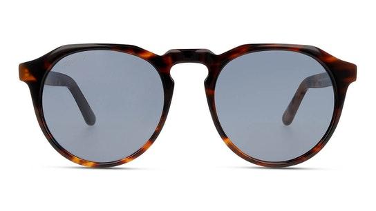 Carey Dark Warwick X W18X04 (HH) Sunglasses Grey / Tortoise Shell
