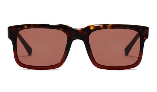 Inwood HINW21WWX0 (BB) Sunglasses Brown / Brown