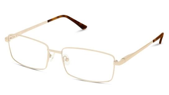 CL CM18 (Large) (DD) Glasses Transparent / Gold