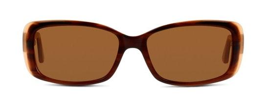 CN EF15 (HH) Sunglasses Brown / Tortoise Shell