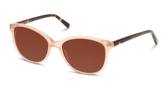 CN EF24 Women's Sunglasses Brown / Brown