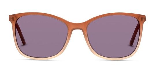 CN EF26 (PD) Sunglasses Green / Brown