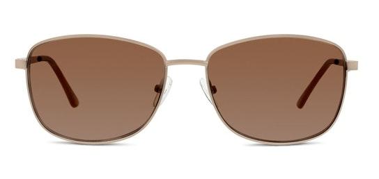 FF09 Men's Sunglasses Brown / Gold