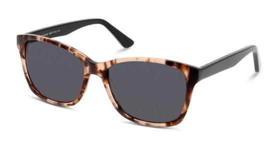 CN FF02 Women's Sunglasses Grey / Tortoise Shell