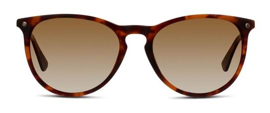 EU01P (HH) Sunglasses Brown / Tortoise Shell