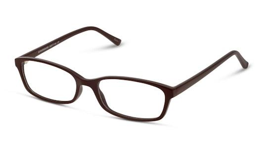 SN GF04 (NN) Glasses Transparent / Brown