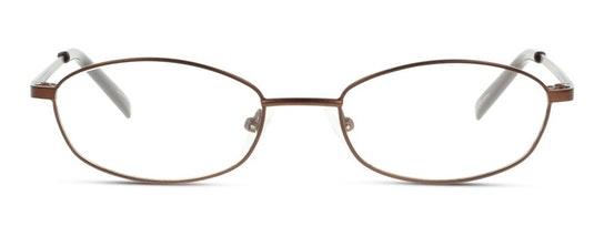 SN IF06 (NN) Glasses Transparent / Brown