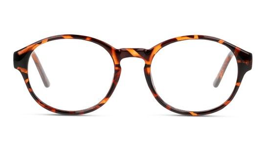 SN OU5005 (HH00) Glasses Transparent / Havana