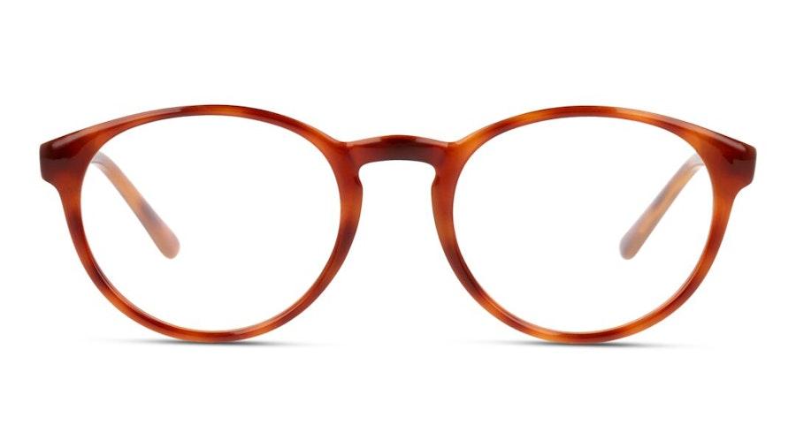 DbyD DB OU0001 Women's Glasses Havana