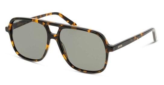 UNSM0014 Men's Sunglasses Green / Tortoise Shell