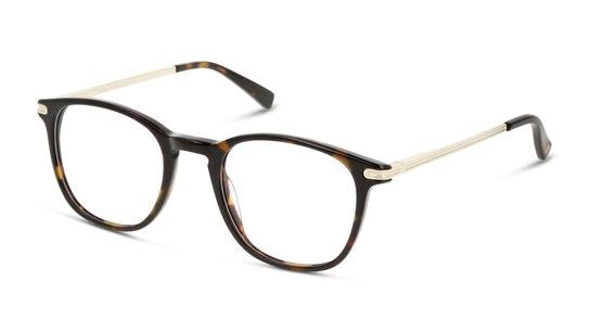 UNOM0161 Men's Glasses Transparent / Havana