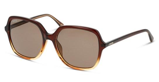 UNSF0131 Women's Sunglasses Brown / Brown