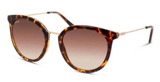 UNSF0130 Women's Sunglasses Brown / Tortoise Shell
