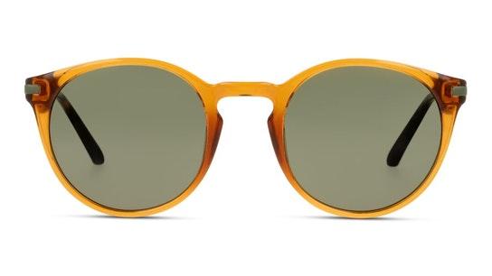 CKJ 20701SGV (702) Sunglasses Green / Tortoise Shell