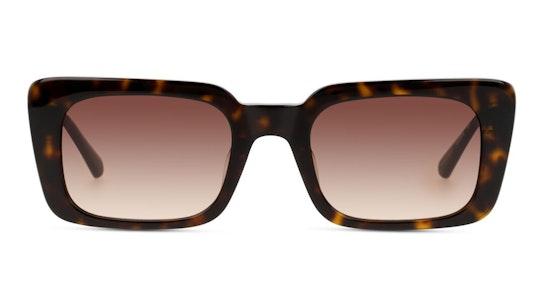 CKJ 20524SGV Women's Sunglasses Brown / Tortoise Shell
