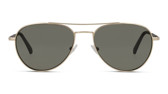 CKJ 20105SGV Men's Sunglasses Green / Gold
