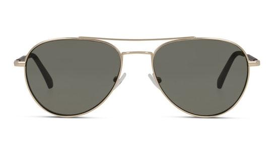 CKJ 20105SGV (717) Sunglasses Green / Gold