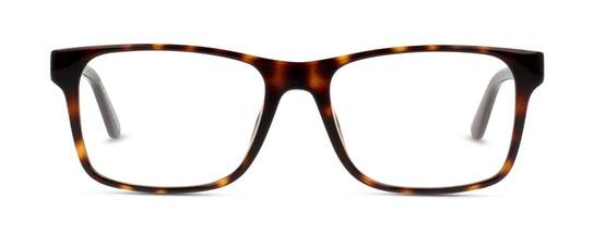 L2741 Men's Glasses Transparent / Tortoise Shell