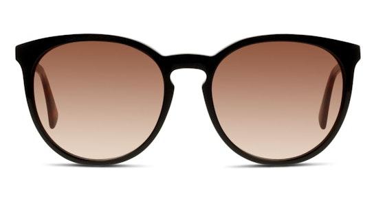 LO 606S Women's Sunglasses Brown / Black