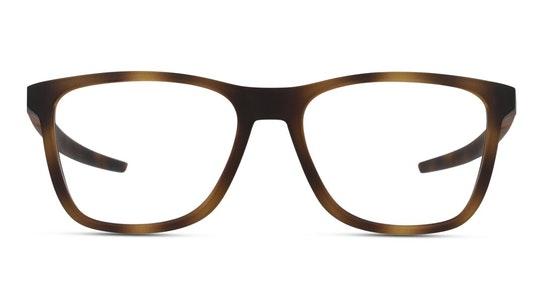 OX 8163 Men's Glasses Transparent / Brown