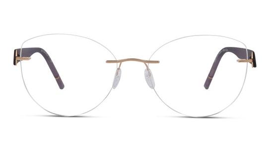 5553 (Large) (3530) Glasses Transparent / Gold
