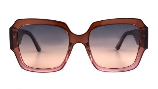 GU 7681 (47B) Sunglasses Grey / Brown