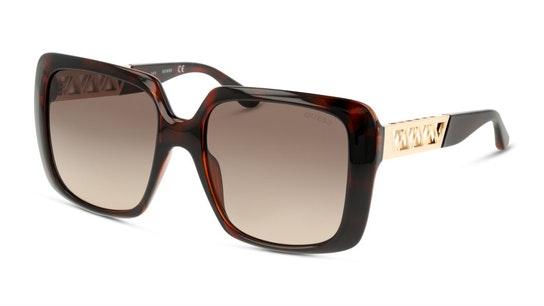 GU 7689 (52F) Sunglasses Brown / Tortoise Shell