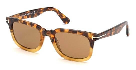 Dario FT 817 (55E) Sunglasses Brown / Havana