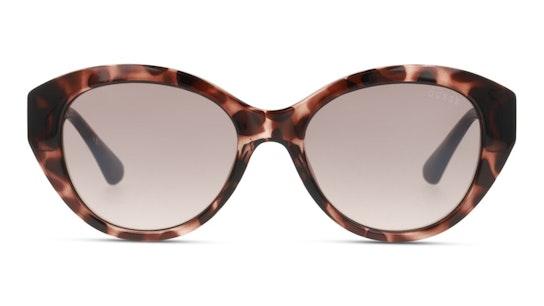 GU 7771 (55F) Sunglasses Brown / Tortoise Shell