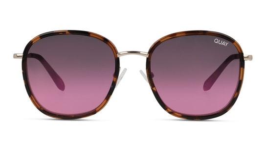 Jezabell Inlay QW-000875 (TRT/NAVYPC) Sunglasses Pink / Tortoise Shell