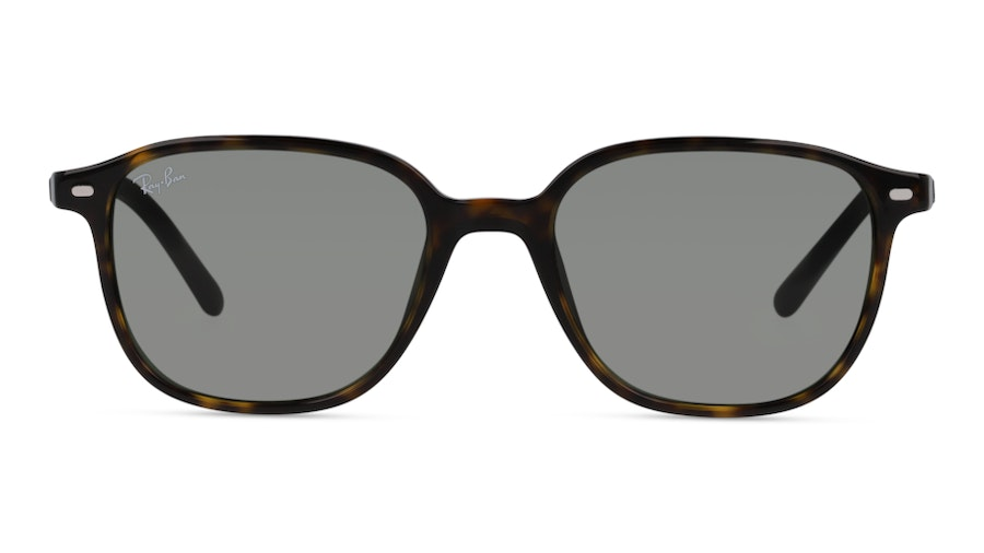 Ray-Ban 0RB2193 902/32 Brun